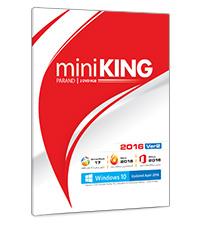 mini KING 2016 Version 2